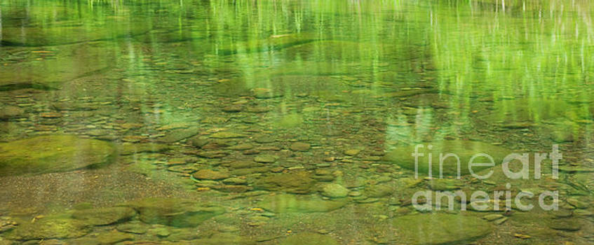 Charmian Vistaunet - Stream Reflections