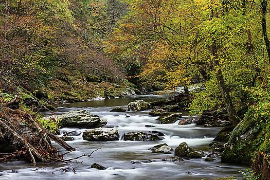 Stream through a fall landscape at foliage peak by Natalie Schorr