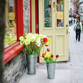 Streets Of Québec City! by Shivendra Singh