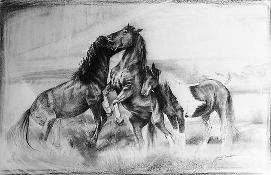 Strength and Honour- Mustangs by Susie Gordon