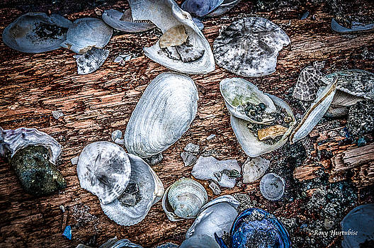 Strewn About II by Roxy Hurtubise