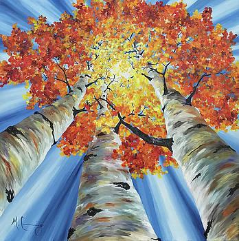 Striking Fall by Melinda Cummings