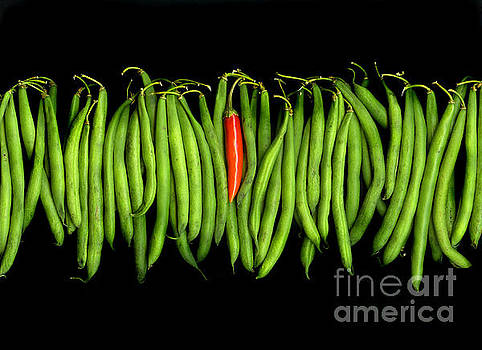 Stringbeans and Chilli by Christian Slanec