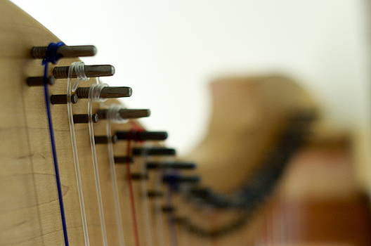 Strings by Sara Kennedy