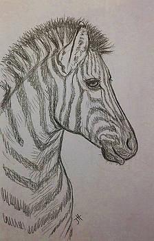 Striped Stud by Jennifer Hotai