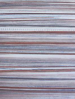 Stripes 46 by Stacy Frank
