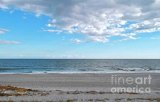 Stroll Along Myrtle Beach by Kathy Baccari