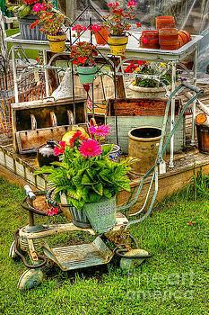 Stroller and Plants by Randy Pollard