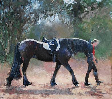 Strolling by Anne Lattimore