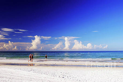 Gary Wonning - Strolling the beach