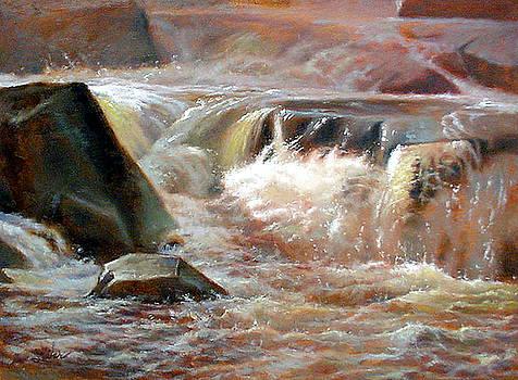 Strong Falls- Peshtigo River by Larry Seiler