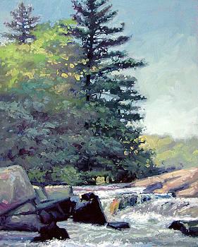 Strong Falls Rivers View- Peshtigo River by Larry Seiler