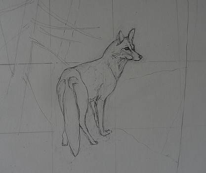 study for Red Fox by Catherine Robertson