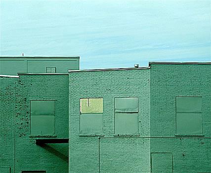 Study in Greens by Myron Schiffer