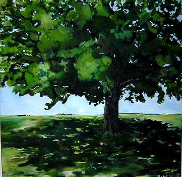Study of a Tree by Judy  Blundell