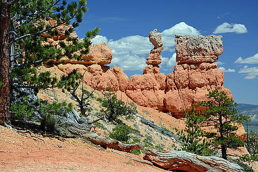 Stunning Bryce Canyon National Park Backcountry by Bruce Gourley
