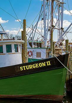 Sturgeon 2 Commercial Fishing Boat by Bob Slitzan