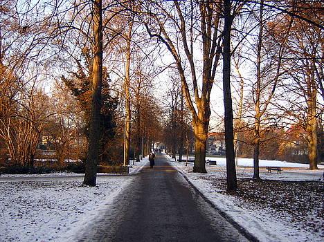 Stuttgart Stroll by Larry Underwood