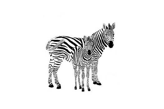 Stylized Zebra with Child by Ramona Murdock