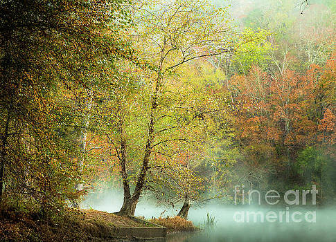 Sublime Mist by Iris Greenwell