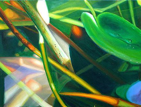 Submerged Jungle by Leonard Aitken