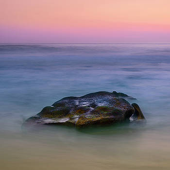 Submerged Rock at Woods Cove by Nazeem Sheik