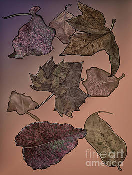 Subtle Autumn by Judy Hall-Folde