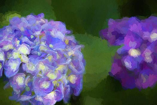Subtle Purple Loveliness by Kathy Clark