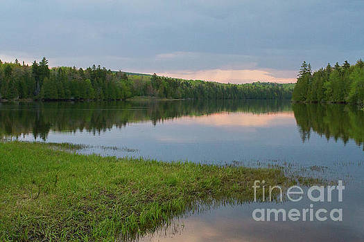 Subtle Sunset on Pond by Denise Lilly