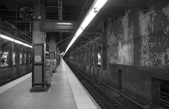 Subway at Grand Central by Allen Carroll
