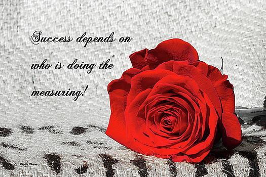 Success by Phyllis Denton