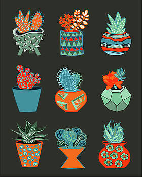 Succulent Garden no. 1 by Lisa Frances Judd