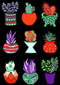Succulent Garden no. 2 by Lisa Frances Judd