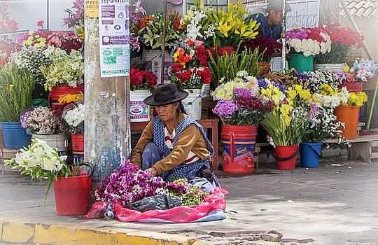 Venetia Featherstone-Witty - Sucre, Bolivia Flower Market
