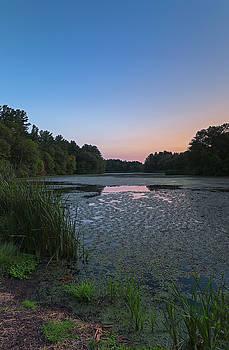 Sudbury Grist Mill Pond by Juergen Roth