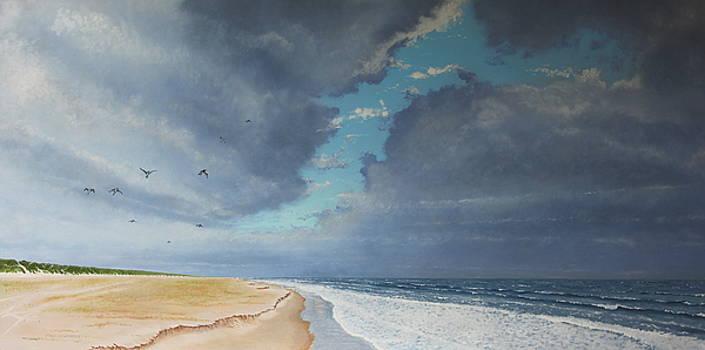 Sudden Flight by Paul Newcastle