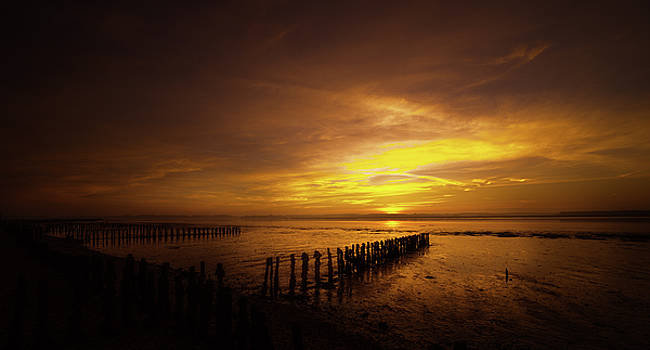 Suffolk Morning by Svetlana Sewell