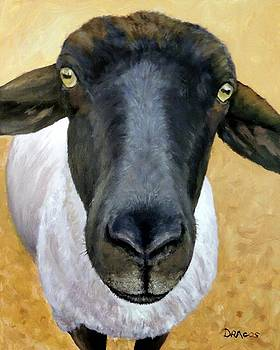 Suffolk Sheep on Gold by Dottie Dracos