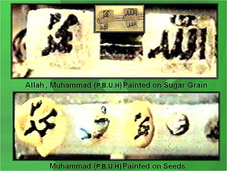Sugar Grain and Many Tinny Seeds by Qaseem Ur- Rahim