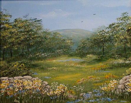 Sugarloaf Meadow by Leea Baltes
