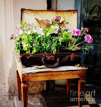 Suitcase of Flowers by Lainie Wrightson