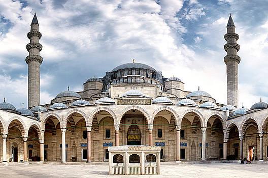 Suleymaniye Mosque by Fabrizio Troiani
