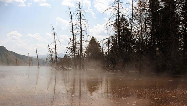 Sulfur fog by Jana Goode