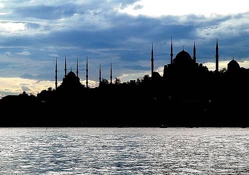 Tracey Harrington-Simpson - Sultanahmet Camii Skyline Istanbul Turkey