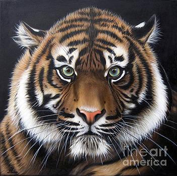 Sumatran 2 by Sandi Baker