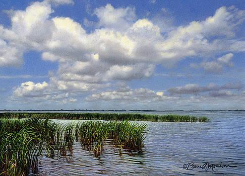 Summer Along Angler's Bay by Bruce Morrison