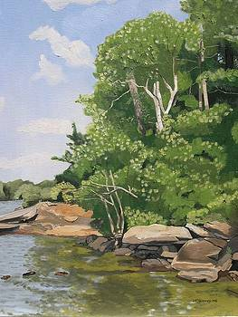 Summer at Head Lake by Joan McGivney