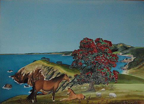 New Zealand Summer by Carolyn Judge