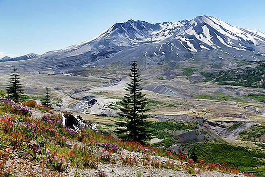 Summer At Mt. Saint Helens by Athena Mckinzie