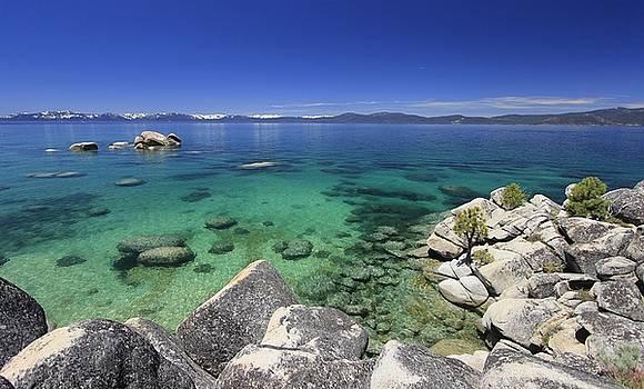 Summer At Whale Rock Beach by Sean Sarsfield